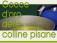 V' MANIFESTAZIONE GOCCE D'ORO DELLE COLLINE PISANE  11 – 12 APRILE 2015 PROGRAMMA
